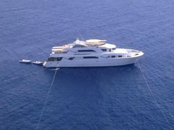 37m Safari dive boat