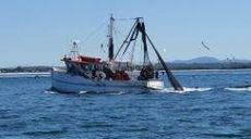"""""""Little Toots Back"""", Great trawler"""