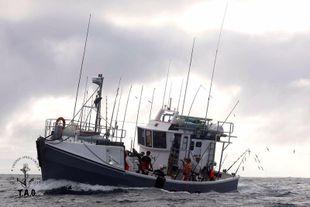 Small Tuna Fishing Boat