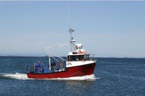 10m Oyster Recovery Vessel