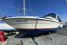 1989 Sea Ray Sundancer 270