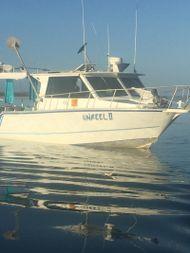 Unreel II
