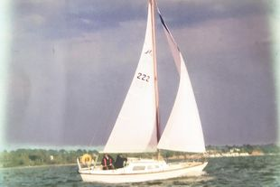 Hurley 22 in good condition