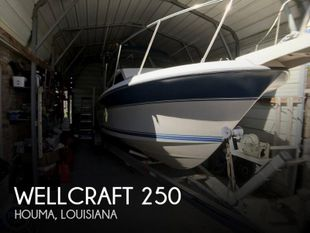1990 Wellcraft 250 Sportsman