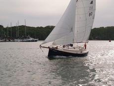 Cape Cutter 19, 'Enigma'