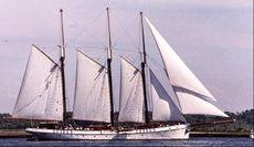 203' x 30' x 13' Steel Tall Ship