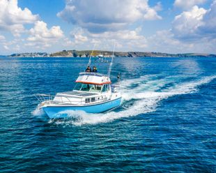 Moonraker 36 cruising motoryacht