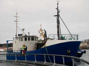 1994 Fishing - Trawler For Sale