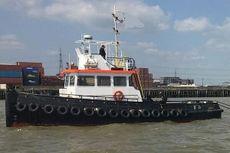 Twin Screw Delta Tug for Sale 10 TBP