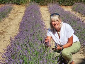 Pam in the lavender fields