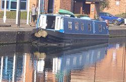 60 ft Narrowboat 'The Sandwich Tern'