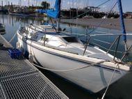 1979 Jaguar Yachts 25
