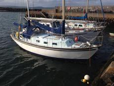 Seadog 30 in N. Ireland