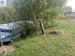Garden mooring in Chertsey