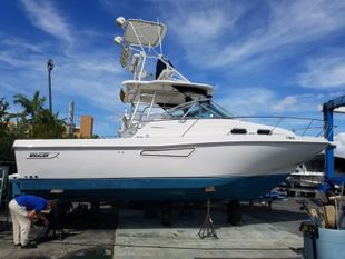 2000 Boston Whaler Defiance