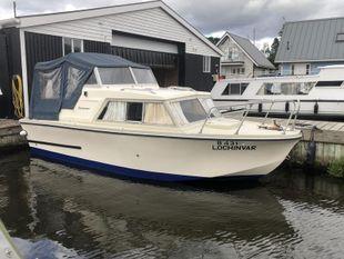 Birchwood 22 river cruiser