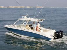 Boston Whaler - 320 Cuddy