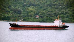 115.10m Multipurpose General Cargo