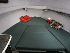 Trophy 2352 Walkaround Cabin