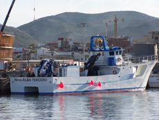 28m Multi purpose catamaran for Sale