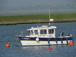 Hardy fast fisher 24ft long wheelhouse