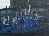 28.65m Dog Class Tug