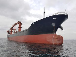 CM0441 Geared 10400 DWT/2005 CHN BLT for sale