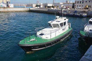 Halmatic Nelson 35 Pilot Boat
