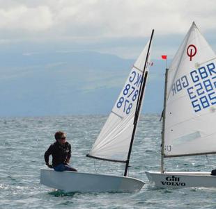HKG878 (based in Ireland) Winner Opti