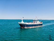 50m Bottom Long Liner Fishing Vessel