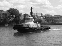 ASD Tug for Sale 43 TBP - Southern Hemisphere
