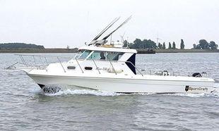 2008 Sportcraft 302