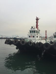 Z-peller Tug Boat 194Ton KangNam