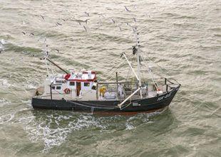 Shrimp and Beam Trawler