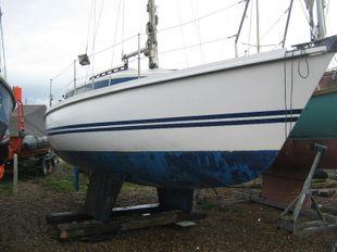26' Pegasus 800