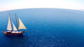 Full sail, wishbone down