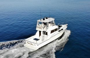2000 Tiara Yachts 4300 Flybridge