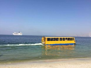 AMPHIBIOUS WATERBUS for sale