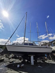 Seamaster Sailer 23 (7.01m) - Hár