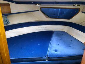 Sealine 365 Sportsbridge Triple Engine (Limited Edition) - Forward Cabin