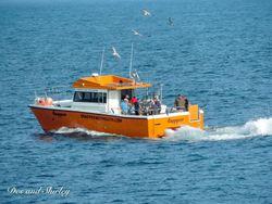 12m powerglide catamaran