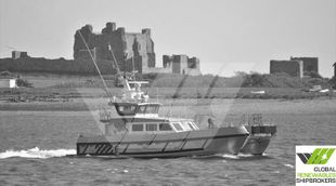 19m / 12 pax Crew Transfer Vessel for Sale / #1078070