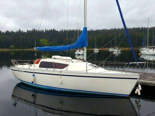 Gibsea 242