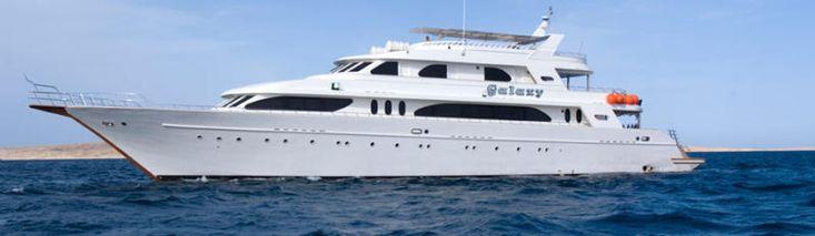42m Deluxe Wood safari Yacht
