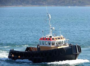 2004 TUG Twin Screw 14.65 m Only For Charter