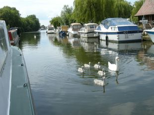 Mooring for rent, London, Kingston upon Thames