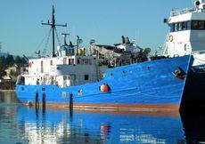 119' General Cargo Single Decker Fish Carrier Mini Freighter