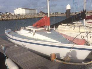 R19 race boat