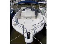 2004 WHITE SHARK 265