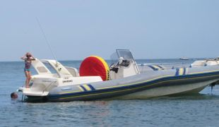 Marlin 22 With V6 220HP inboard <50hrs